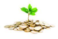 Как маркетинг из затрат превратить в инвестиции