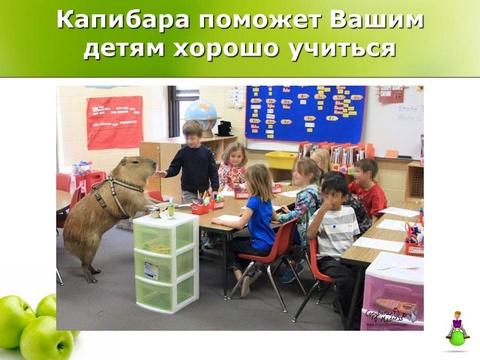 Капибара поможет Вашим детям хорошо учиться