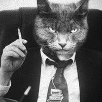 Вашему боссу не нужна CRM