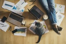 Как наладить работу из дома и не сойти с ума