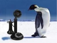 7 секретов холодных звонков